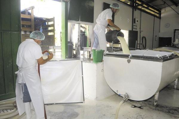 Fedegán le pide al Ministerio de Comercio apoyar a la producción de leche local