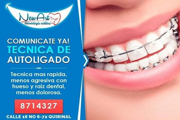 Estados Financieros de New Art Odontología Estética S.A.S.