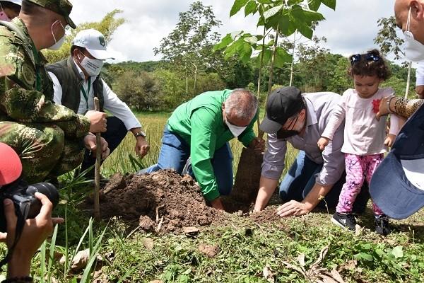 140 mil árboles han sido sembrados en Colombia