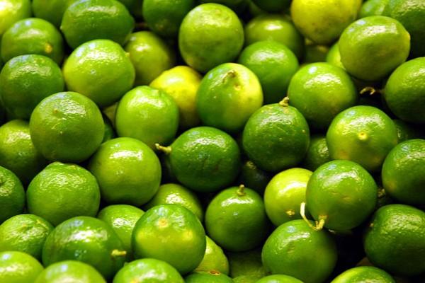 Yaguará producirá Limón Tahití tipo exportación