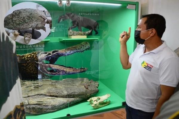 Huila tienen el segundo laboratorio Paleontológico de Colombia