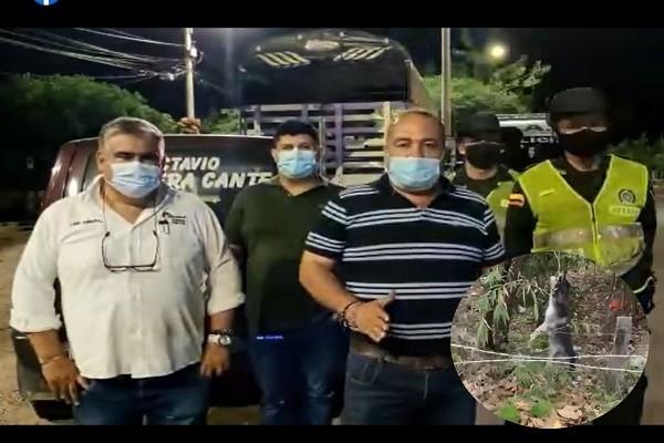 Neivanos rechazan cruel asesinato de un perro en el sur